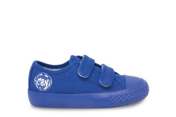 284764 canvas blue