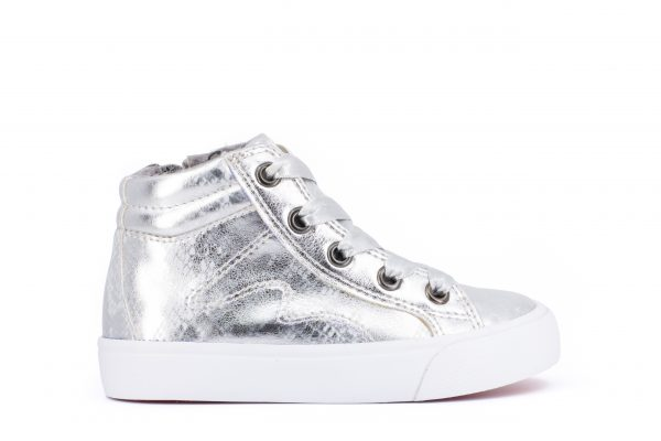 814876 canvas silver scaled